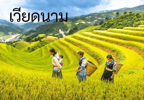 ไปเที่ยวเวียดนามกันถอะ